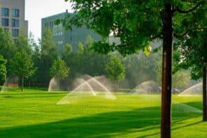 pelouse avec système d'arrosage automatique
